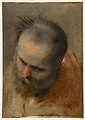 Head of a Bearded Man Looking to Lower Left (Nicodemus) MET DP812339.jpg