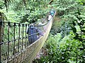 Heligan Rope Bridge.jpg