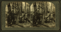 Helping uncle tap the sugar maple trees, by Keystone View Company.png