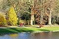 Herbst im Park - Blätter, Bäume, Seeufer und Wege im Wandel der Jahreszeiten. (5).jpg