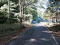 Highway 199.jpg