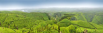 Munnar - A Beautiful view of Munnar