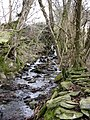 Hillside stream - geograph.org.uk - 750624.jpg