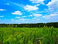Hilltop Prairie - panoramio (2).jpg
