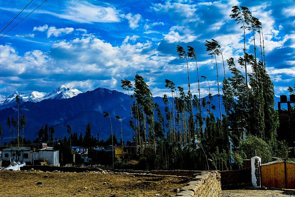 Himalayan Backdrop near Leh