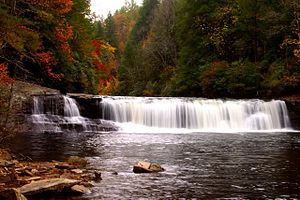 Immagine Hooker_Falls_DuPont_State_Forest_NC.jpg.