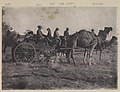 Horn Scientific Expedition - expedition on camels.jpg