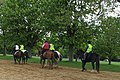 Horse riders in Green Park - geograph.org.uk - 1839215.jpg