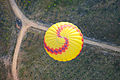 Hot air balloon over National Arboretum 1.JPG