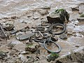 Humber Foreshore - A Very Ex Bicycle - geograph.org.uk - 1326284.jpg