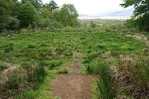 Hut circle - A hut circle in Torr Righ, Arran, Scotland