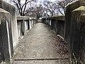 Hutton Street Bridge, Linwood, Cincinnati, OH (47362485642).jpg