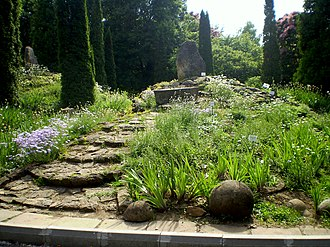 Rock garden - Small rockery in the Iaşi Botanical Garden, Romania