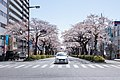 Ibaraki Prefectural Route-293 11.jpg