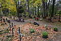 Iisaku kalmistu 06.JPG