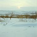 In the dead of winter (1980). (11565191135).jpg