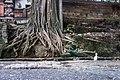 Indonesia - Ubud (26814367411).jpg
