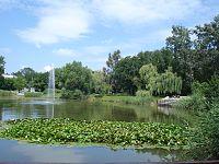 Ino Park Solankowy staw.jpg