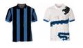 Inter20102011.png