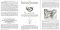 Intersex diagnosis - Case study University of Marburg Germany 1932-34.jpg