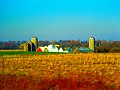 Iowa Farm - panoramio.jpg