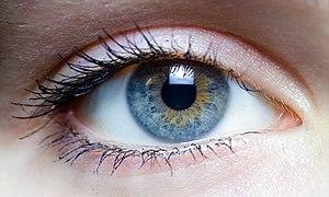 Iris - left eye of a girl.jpg