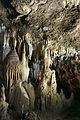 Ishigaki-Cave06s5s4592.jpg