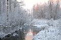 Jägala jõgi Kiigumõisa maastikukaitsealal.jpg