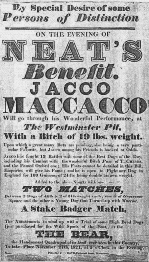 Jacco Macacco - An 1821 advertising broadsheet for a match between Jacco and a 19-pound bitch.  Although Jacco's fight was the headline, the event also featured dog fights, badger-baiting and the Westminister Pit's renowned bear.
