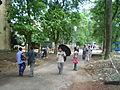 Jadavpur University Campus 02142.JPG