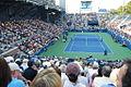 Janko Tipsarević on US Open 2012.jpg