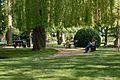 Jardin anglais de Vesoul 6.jpg