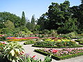 Jardin botanique lyon.JPG