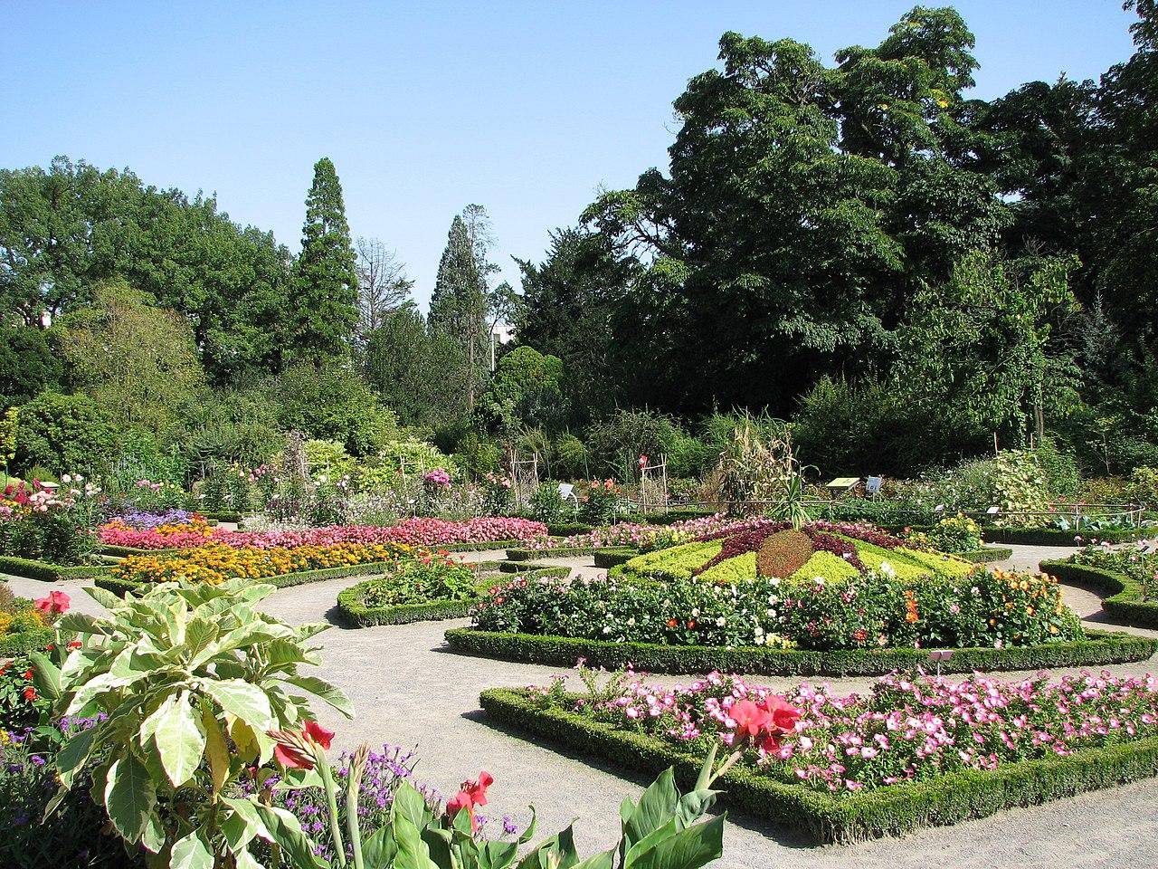File jardin botanique lyon jpg wikimedia commons for Parc et jardin