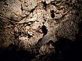 Jaskinia Lokietka Sypialnia 3.jpg