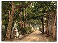 Jersey, Vinchelez Lane, Channel Islands-LCCN2002696507.jpg