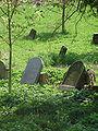 Jewish cemetery in Ivanovice na Hané 3.jpg