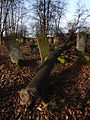 Jewish cemetery in Szydlowiec Poland 6.JPG