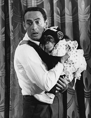 The Joey Bishop Show (sitcom) - Joey Bishop and one of the Marquis Chimps