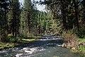 John Day River, Malheur National Forest (35502394204).jpg