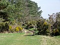Jubilee Trail, Penbury Knoll - geograph.org.uk - 1210011.jpg