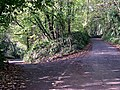 Junction in the Valley Woods - geograph.org.uk - 370005.jpg