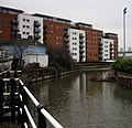 Junction of City Mill River and Bow Back River - geograph.org.uk - 1166743.jpg