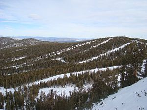 June Mountain ski area - View of the ski slopes at June