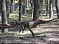 Jurapark, Solec Kujawski, Poland (www.juraparksolec.pl) - panoramio (35).jpg