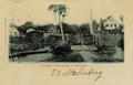 "KITLV - 1405634 - Bromet & Co. - Paramaribo - ""Plantation Pieterszorg - Surinam"" - 1895-1908.tif"