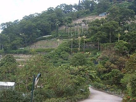 Kadoorie Farm And Botanic Garden Wikiwand