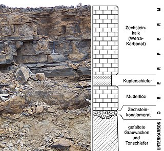 Wuchiapingian Eighth stage of the Permian