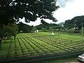 Kanchanaburi War Cemetery - panoramio.jpg
