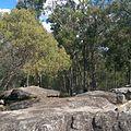 Karrawatha Forest Rocks track outlook.jpg